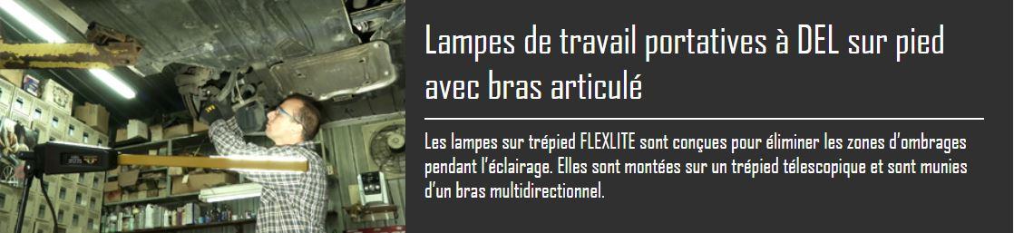 flexlitetrepied